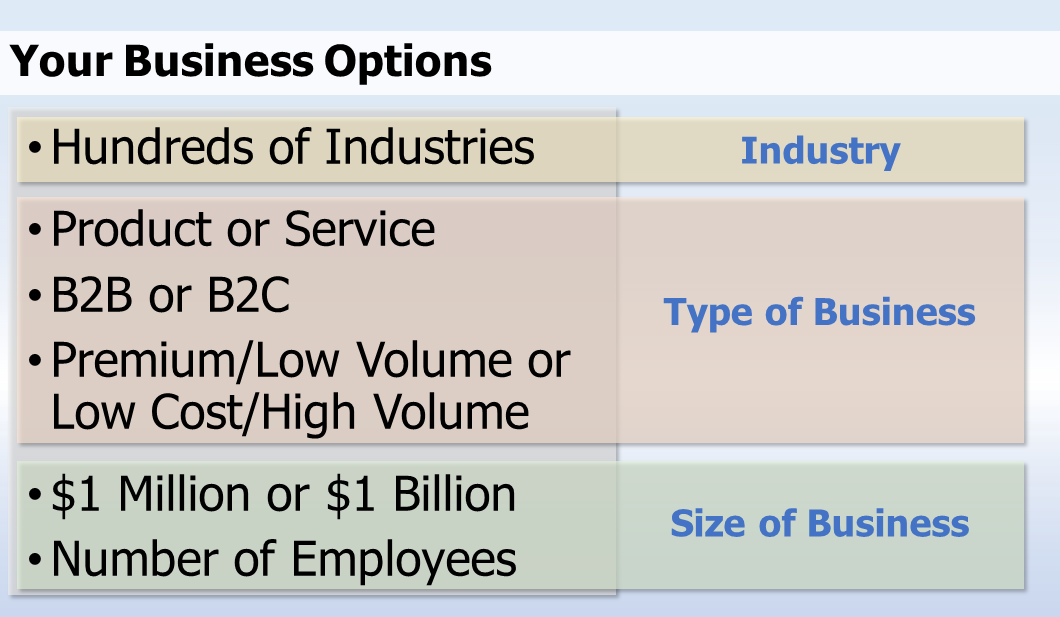 Your Business Options